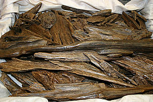 Gaharu wood chips  © TRAFFIC Southeast Asia/J. Compton