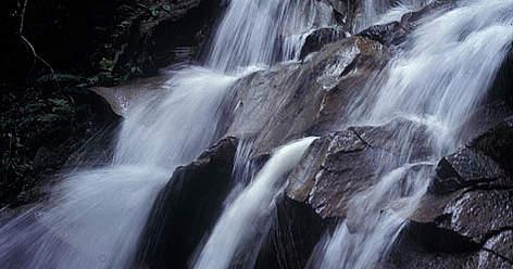 Hutan Lipur Jeram Toi in Negeri Sembilan rel=